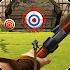Archery Hero 3D 1.0