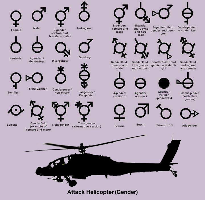 attack helicopter gender