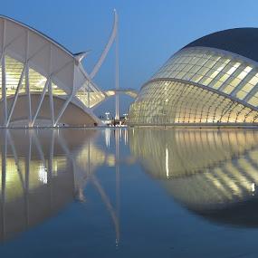 Calatrava buildings, Valencia by Luis Felipe Moreno Vázquez - Uncategorized All Uncategorized ( reflections, architecture, valencia, calatrava )