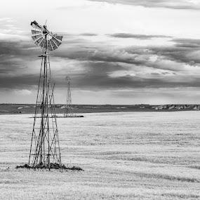 The two towers by Jim Talbert - Black & White Objects & Still Life ( landscapes, sky, canon 5d mkiv, windmills, nature, windmill, yellow, bluffs, kansas, canon, goldenhour, wheat, kansas magazine, landscape )