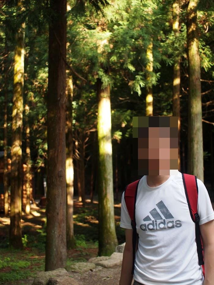 숲 앞에서