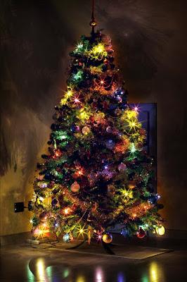 Merry Christmas di fedevphoto