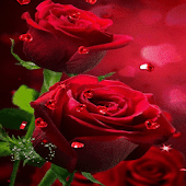 Red Roses Hearts LWP
