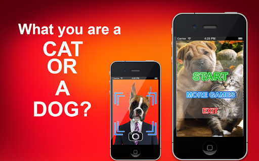 What you are a Cat or a Dog? for PC
