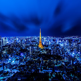 A Jewel Amidst a Megapolis by Kazuki Nakamura - Buildings & Architecture Public & Historical ( building, metropolis, tokyo, city lights, night, tokyo tower, cityscape, nightscape, city )