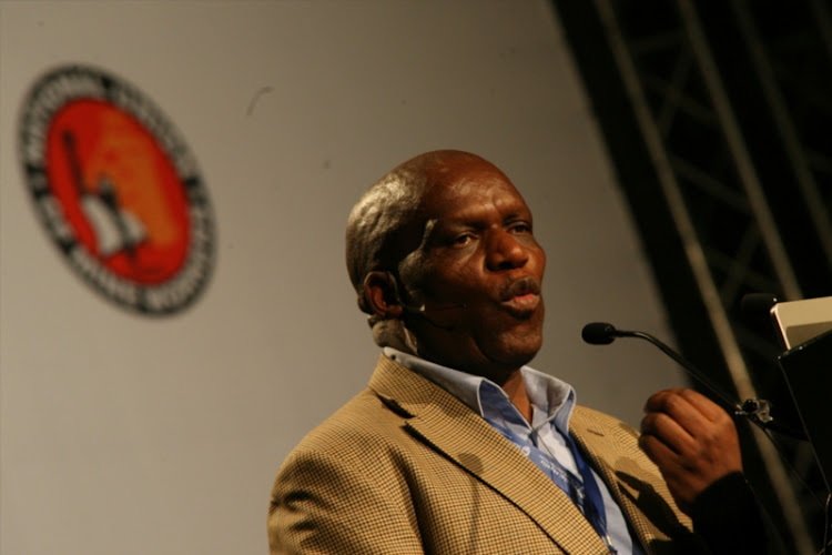 Minister of Agriculture Senzeni Zokwana. File photo.