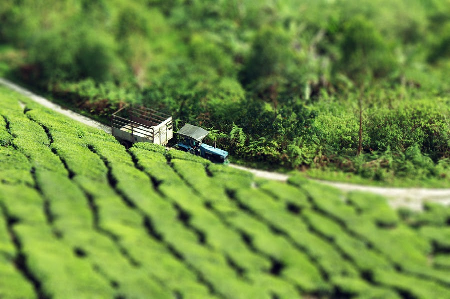 Miniature Scenes (Tilt Shift)