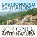 Castronuovo Sant'Andrea icon