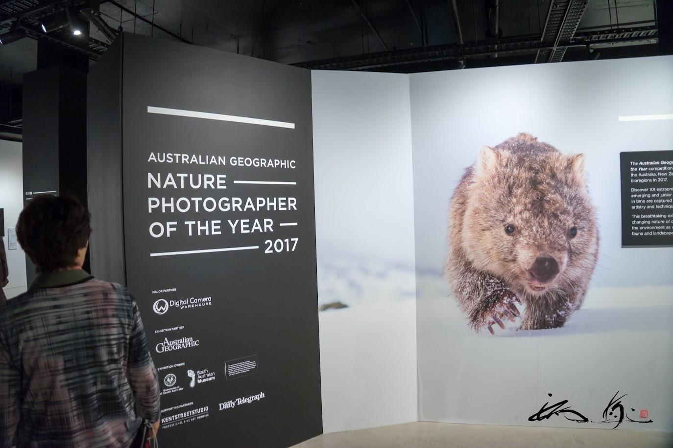 自然写真展2017