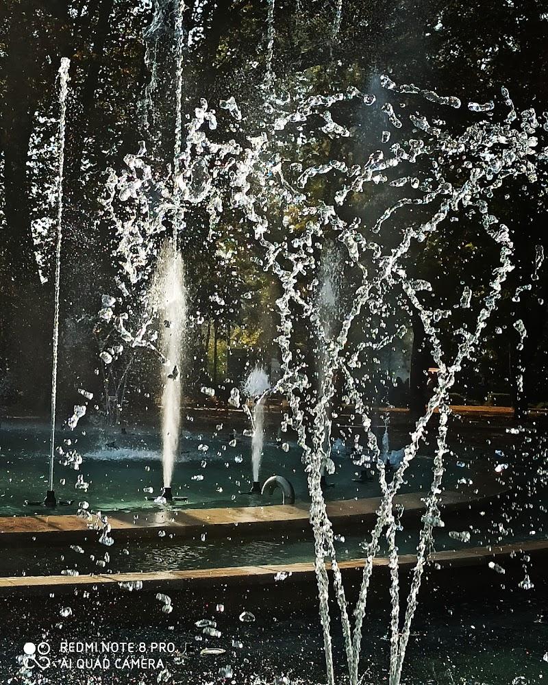 fontana di budapest di tesoka72