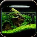 Aquascape Design Idea icon