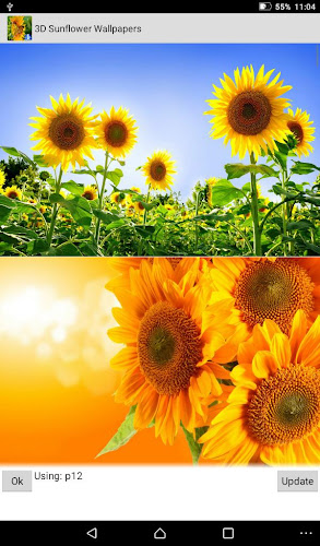 ... Sunflower Live Wallpapers Android App Screenshot ...