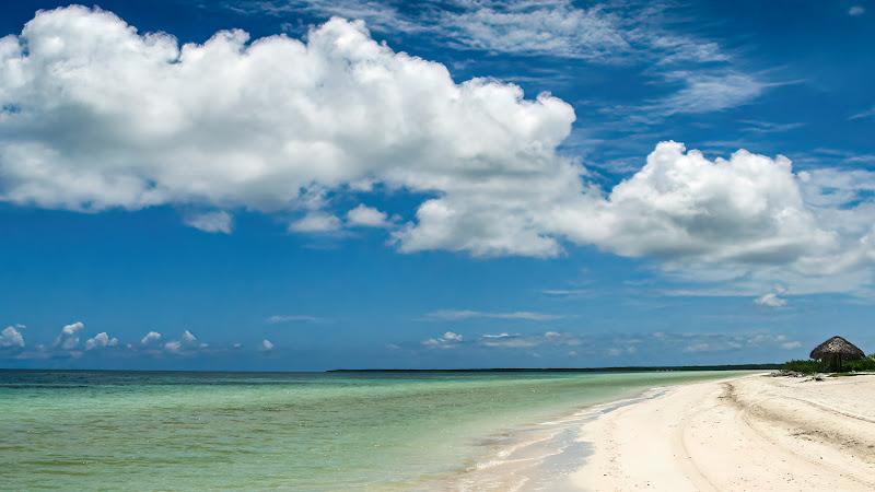 Mare Caraibico di Nevio Saule