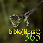 365 bible (Norsk) icon