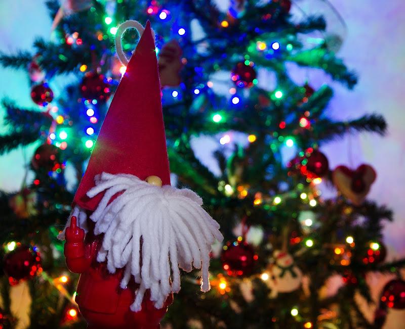 lo spirito del Natale 2020 di Primula Vico