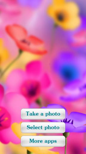 Photo Frames - Flowers 2