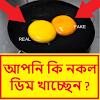 প্লাস্টিকের নকল ডিম চেনার সহজ উপায় Fake Egg