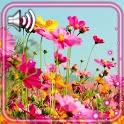 Wild Flowers icon