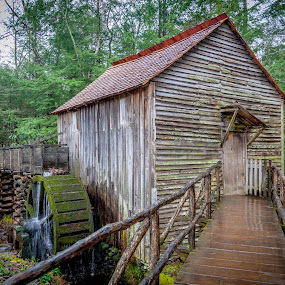 Mill House Walk by Dale Fillmore - Buildings & Architecture Decaying & Abandoned ( water wheel, walkway, architecture, national park buildings, old building )