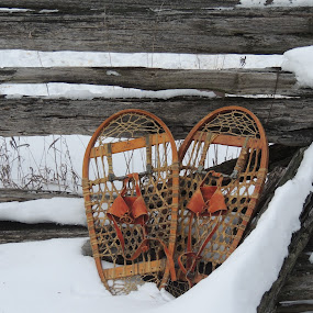 GRANDPA SNOW SHOES by Laura Cummings - Transportation Other ( grandpa snow shoes,  )