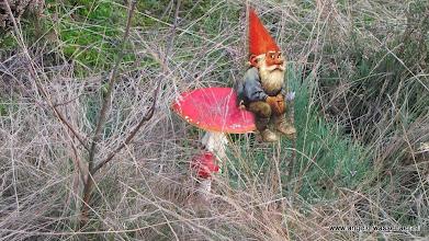 Photo: Oh ja, ze hebben ook Bouters in Markelo! Kijk maar eens bij de DRACC's in de tuin.....