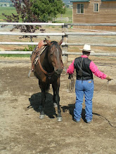 Photo: I will try the same series of exercises that we did with the ring rope, but now with the lariat. CAUTION: Make sure you have practiced coiling and allowing the coils to flow off your hand, prior to hooking on to a horse! A human helper works well for this.