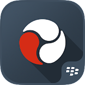 BlackBerry Workspaces Dynamics