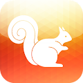 4G/5G UC Browser Download Tips
