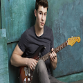 SHAWN MENDES-Songs Offline (40 Songs) APK