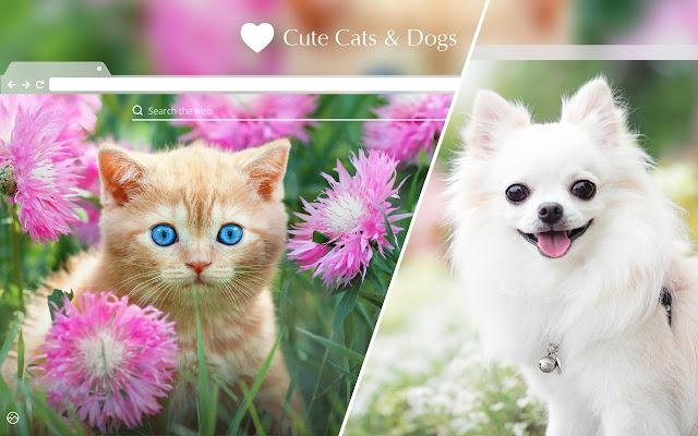 Cute Cats & Dogs HD Wallpaper New Tab Theme