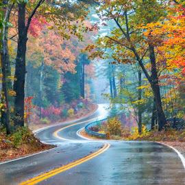 Curvy Fall Road by Sue Matsunaga - Transportation Roads