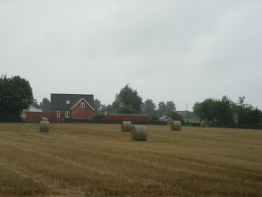 Photo: Hay in the field.