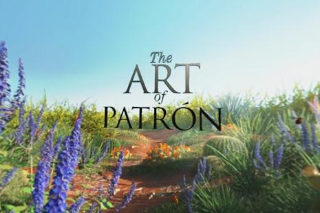 Tải Art of Patrón 360° APK