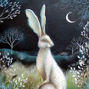 К чему снится заяц?