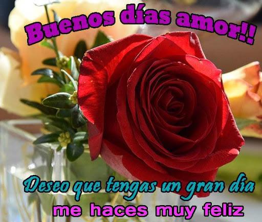 Buenos Dias Amor Con Rosas Rojas Apk Download Apkpure Co