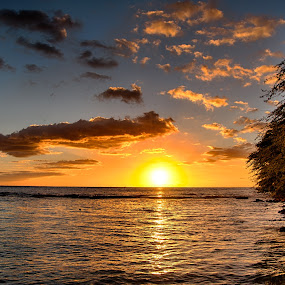 Sunset at a Luau by Brent Sharp - Landscapes Sunsets & Sunrises ( clouds, sky, hdr, tree, sunset, sea, ocean, hawaii, sun,  )
