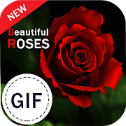 Roses Gif