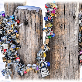 Locks Along the Harbor by Gary Hanson - Artistic Objects Other Objects ( pier, duluth, harbor, winter, locks, padlocks,  )