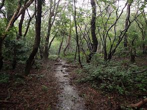 水の流れる登山道を進み