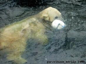 Photo: Ein neuer Ball muss her ;-)