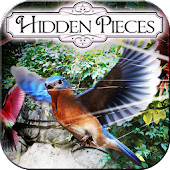 Hidden Pieces: Aviary