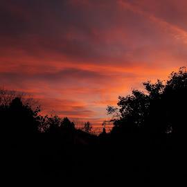 Fire in the sky. by Teodora Jelić - City,  Street & Park  Skylines ( sky, cloud, red )