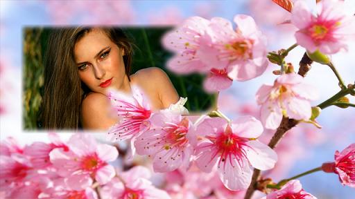 櫻花花相框