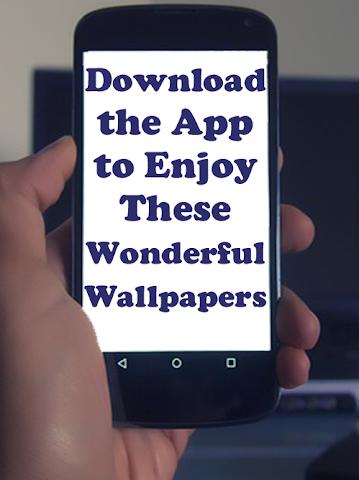 android MegaHD Minions Wallpapers Screenshot 0