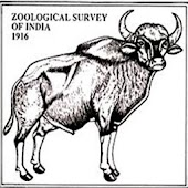ZSI Zoological Survey of India