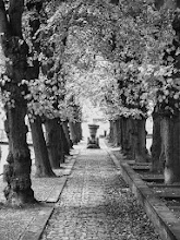 Photo: Wismar