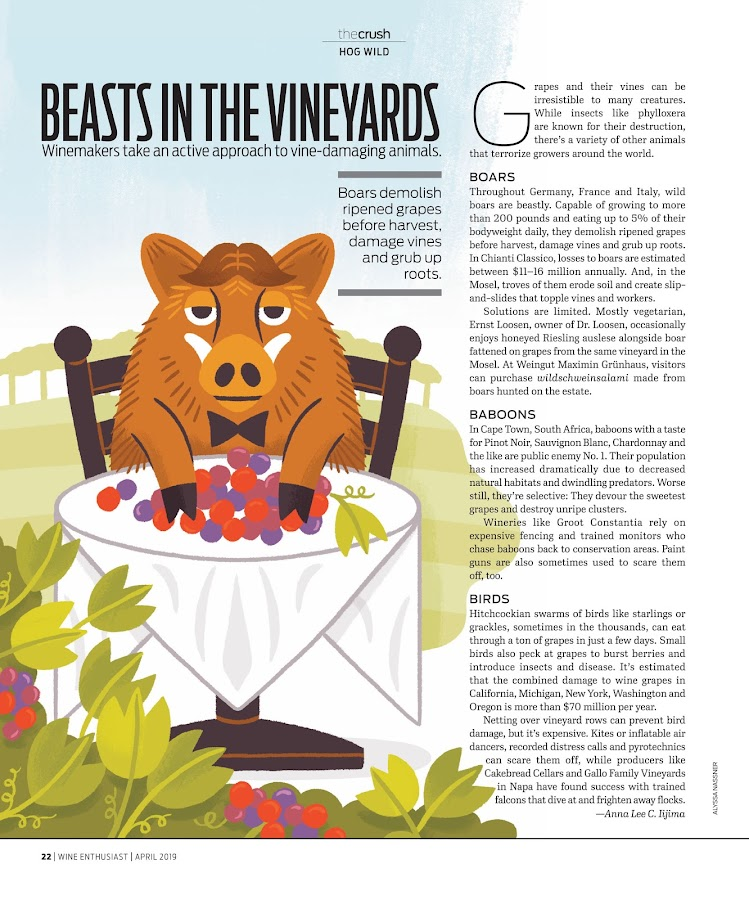 Wine Enthusiast Magazine- screenshot