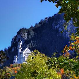 Castle  by Dunja Milosic Odobasic - City,  Street & Park  Historic Districts