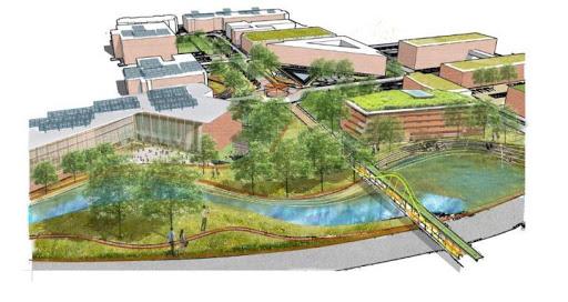 CAPPA students win national environmental design challenge