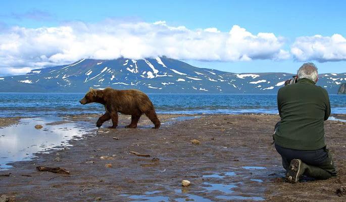 Il passaggio dell'orso di Sgheno